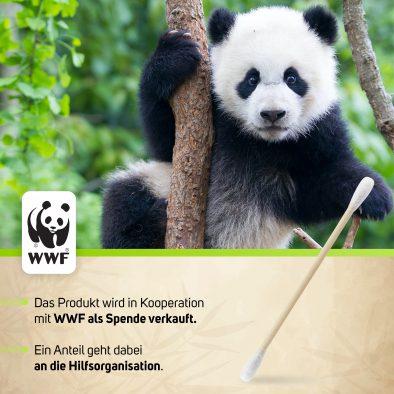 4 WWF
